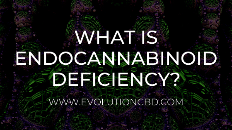What is Endocannabinoid Deficiency - On The Endocannabinoid System
