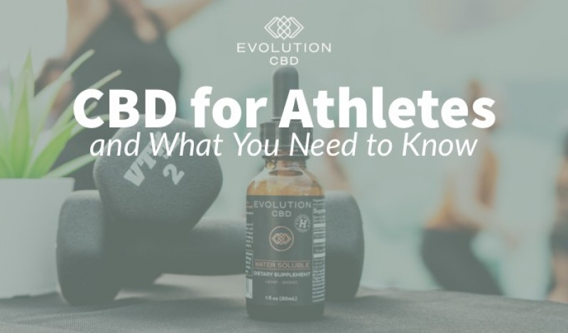 CBD for Athletes and What You Need to Know